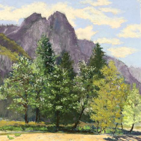 On the Merced River- Yosemite
