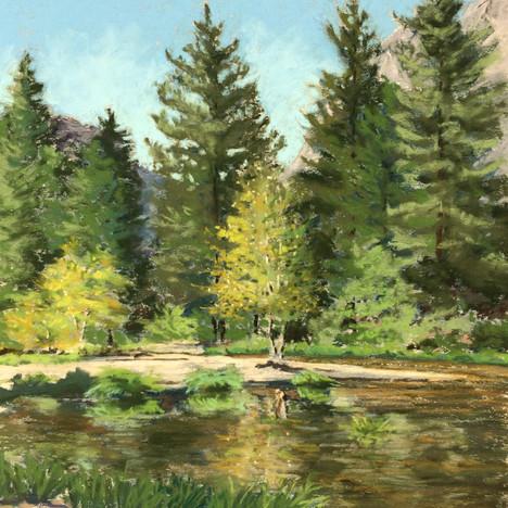 Aspen- Yosemite