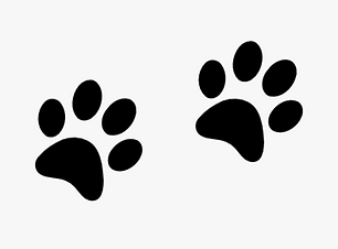 7-74885_clip-art-tiger-paw-dog-paw-print