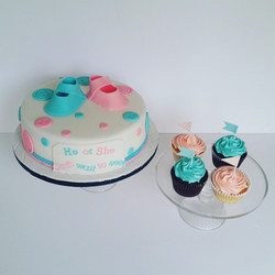 Baby Shower Reveal Cake