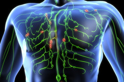 how-to-cleanse-your-lymphatic-system-top