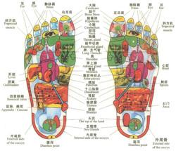 reflexology-Chinese