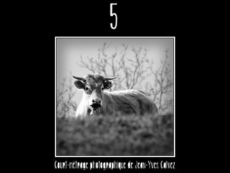 """""""5"""" un numéro gagnant pour les Amis de la Couleur"""