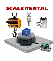 rental scale.png