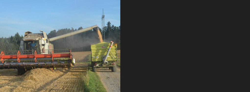 Grain Tractor dumping grain in trailer with Ag weigh bars