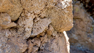 Cattle Call Wall New Mexico Jemez