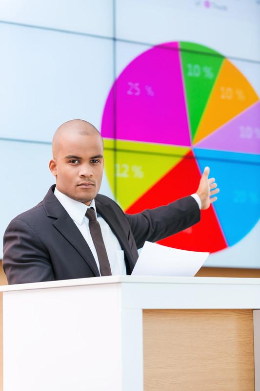 An Expert Statistician Analyst