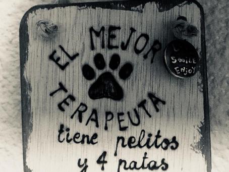 El perro en las Terapias Asistidas con Animales.