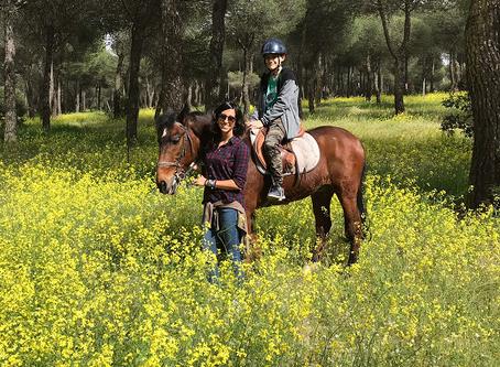 Terapias con caballos, aclarando ideas.