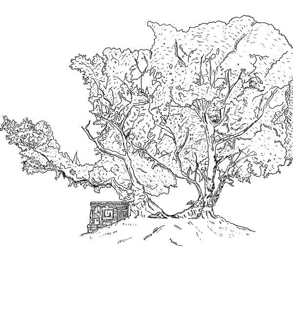 Hippocrates Tree.jpg