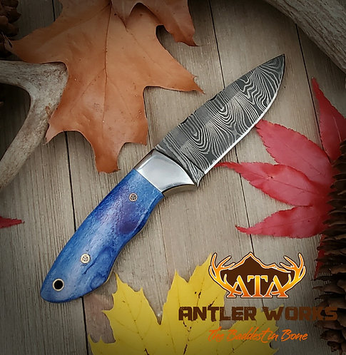 Twist Damascus knife with dyed bone scales