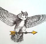 Brandon owl.jpg