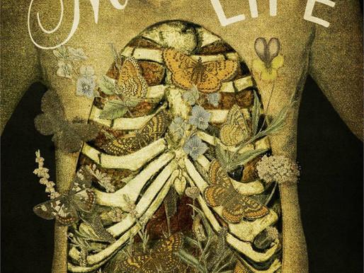 "Unexpected Influences: Loren Rhoad talks about her new memoir, ""This Morbid Life"""