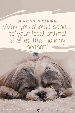 Sharing is Caring: Why you should donate to your local animal shelter this holiday season!