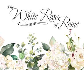 Do you love Greek&Roman Mythology? Get ready to rejoice: A new webtoon project is headed your way!