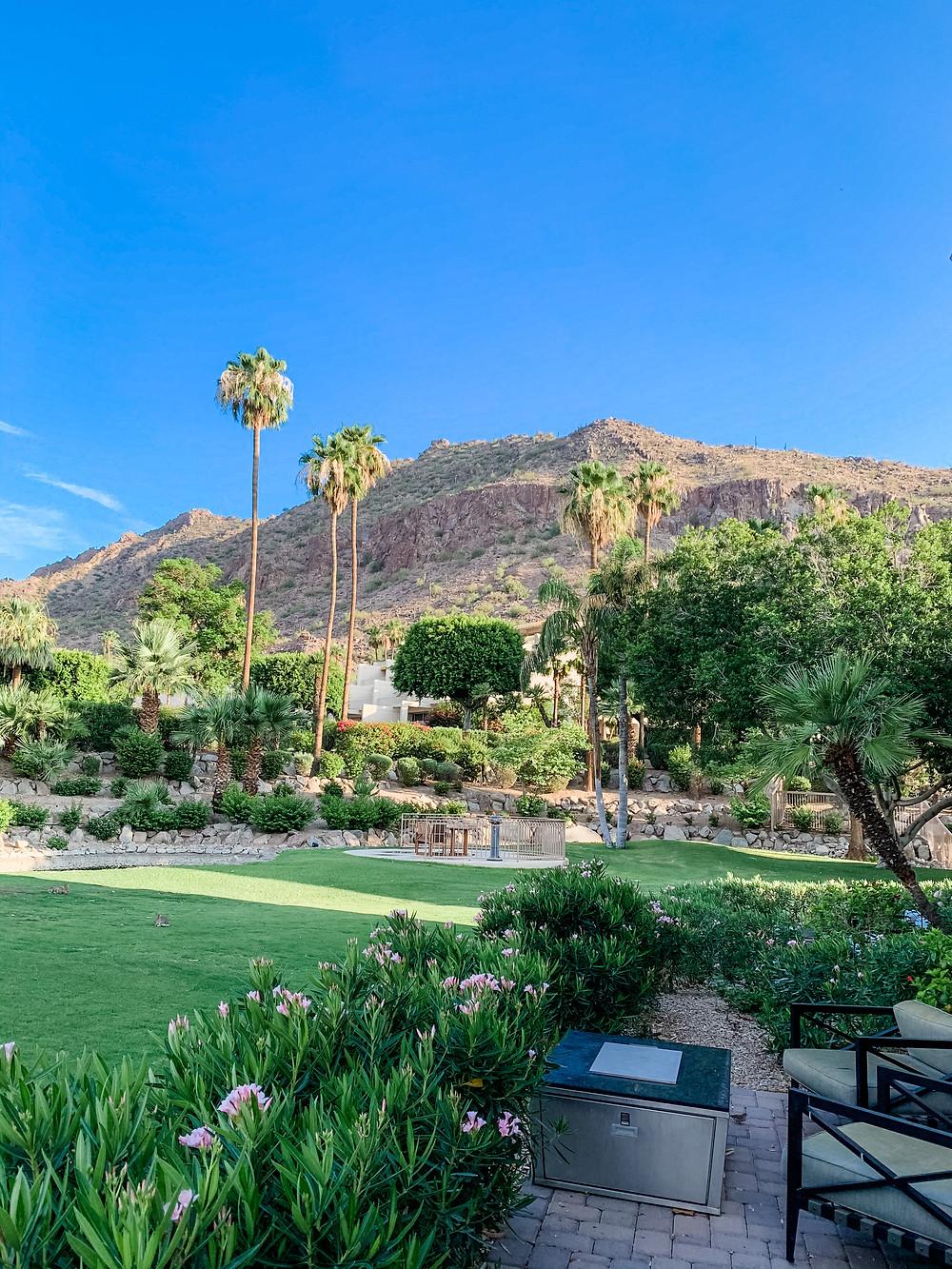 The Phoenician Resort Scottsdale Arizona Room View Camelback Mountain