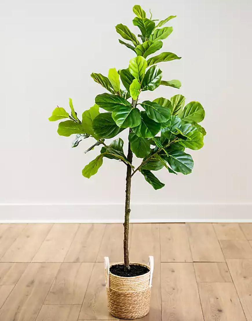 faux fiddle leaf tree in basket planter