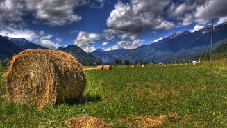 GDP of Pemberton, BC Returns to $0.00