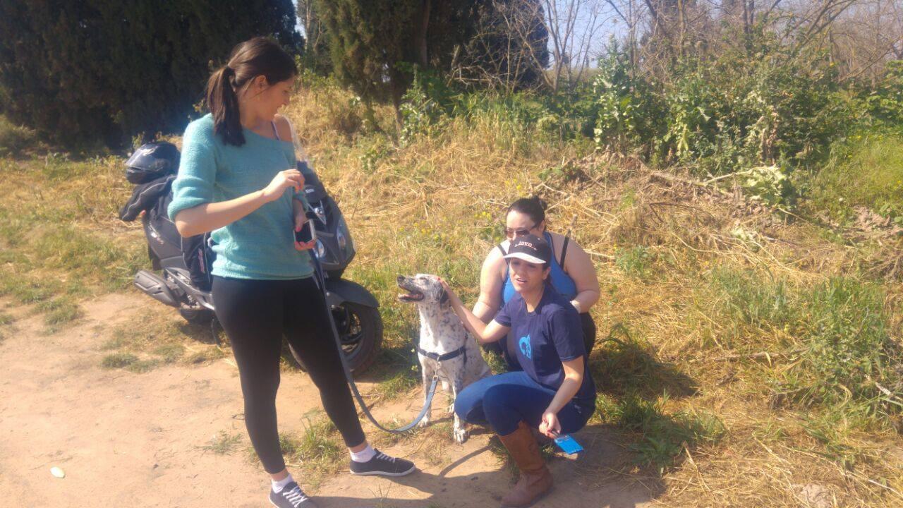 מתנדבים ביום המעשים הטובים בכלביה
