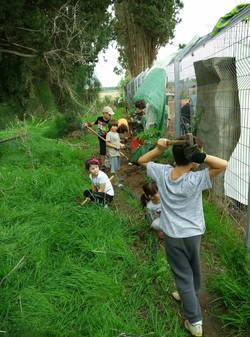 """מתנדבי עמותת """"שמיכה לשמחה"""" באו לעזור"""