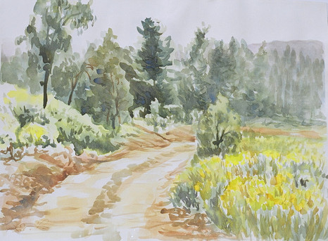On the way to Beit Shemesh Watercolor on paper, 70X50 cm.