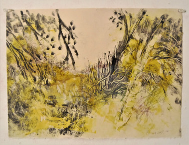 Leaves in the wind Monotype, 38X28 cm.  2018