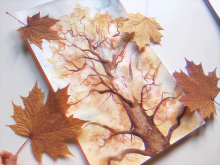 Tapping into the energies of trees: Maple🍁🍁🍁