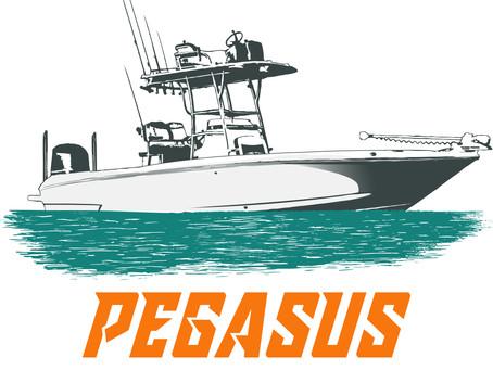 Pegasus Joins The Family