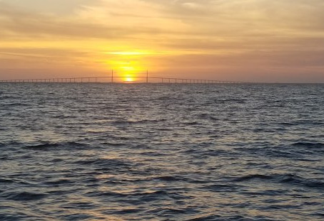 More Than Fishing - Take a Tour of Tampa Bay's Other Water Attractions!