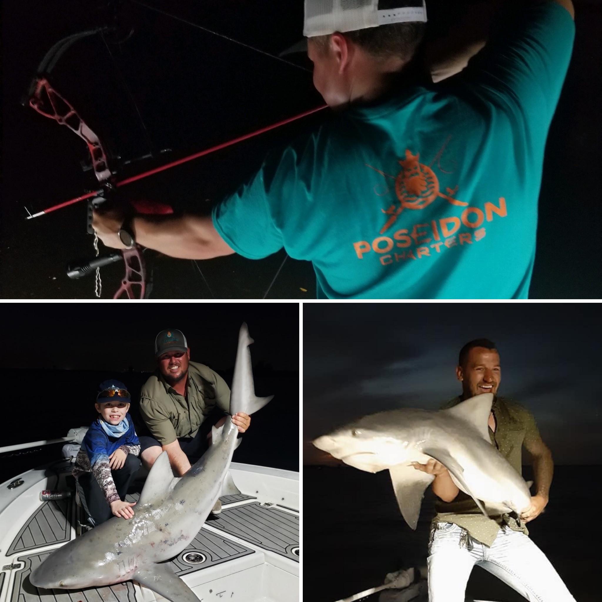Shark / Bowfishing Combo