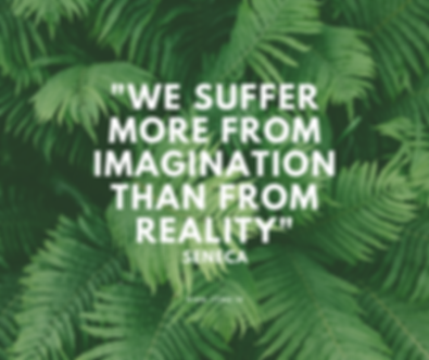 we_suffer_more_from_imagination_than_fro