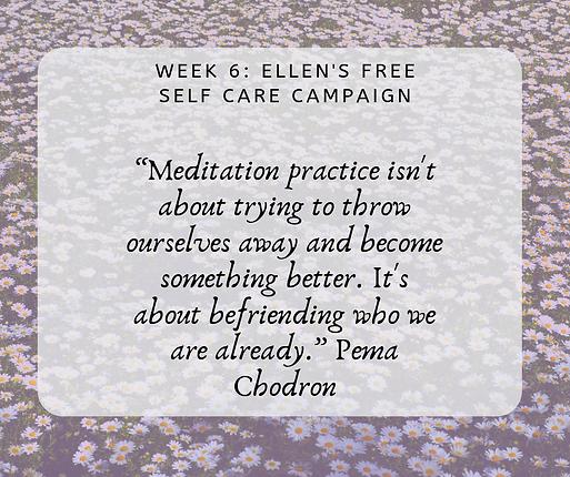Week 6 Meditation.png