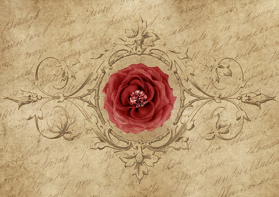 rose-3400953_1920.jpg