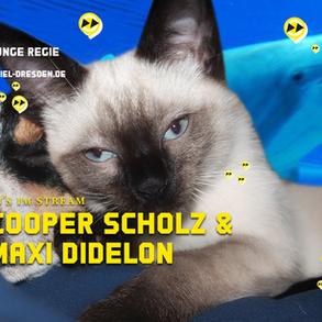 COOPER SCHOLZ & MAXI DIDELON