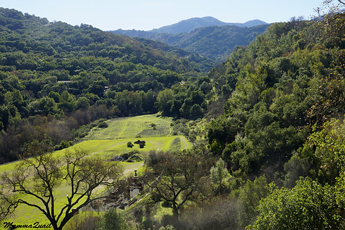 Sunday May 16 Rigorous Hike to Almaden Quicksilver County Park