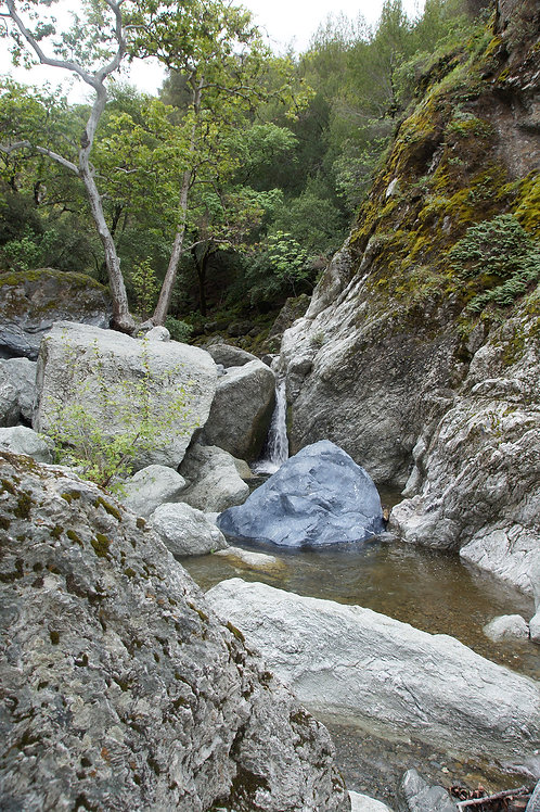 Saturday February 27  Family Hike: Sunol Regional Wilderness
