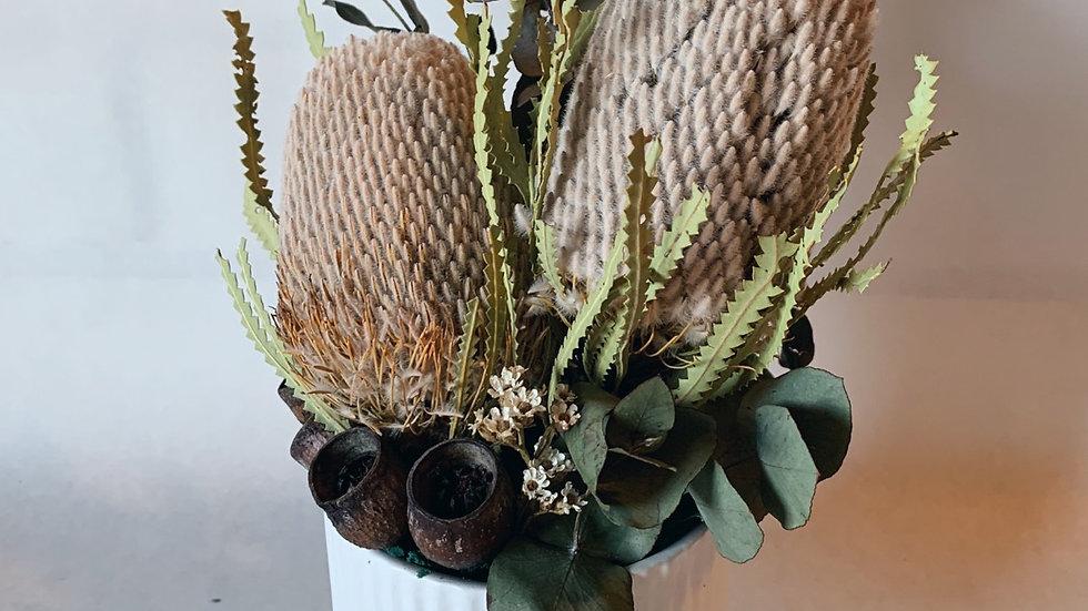 Native Delight Everlasting Flowers