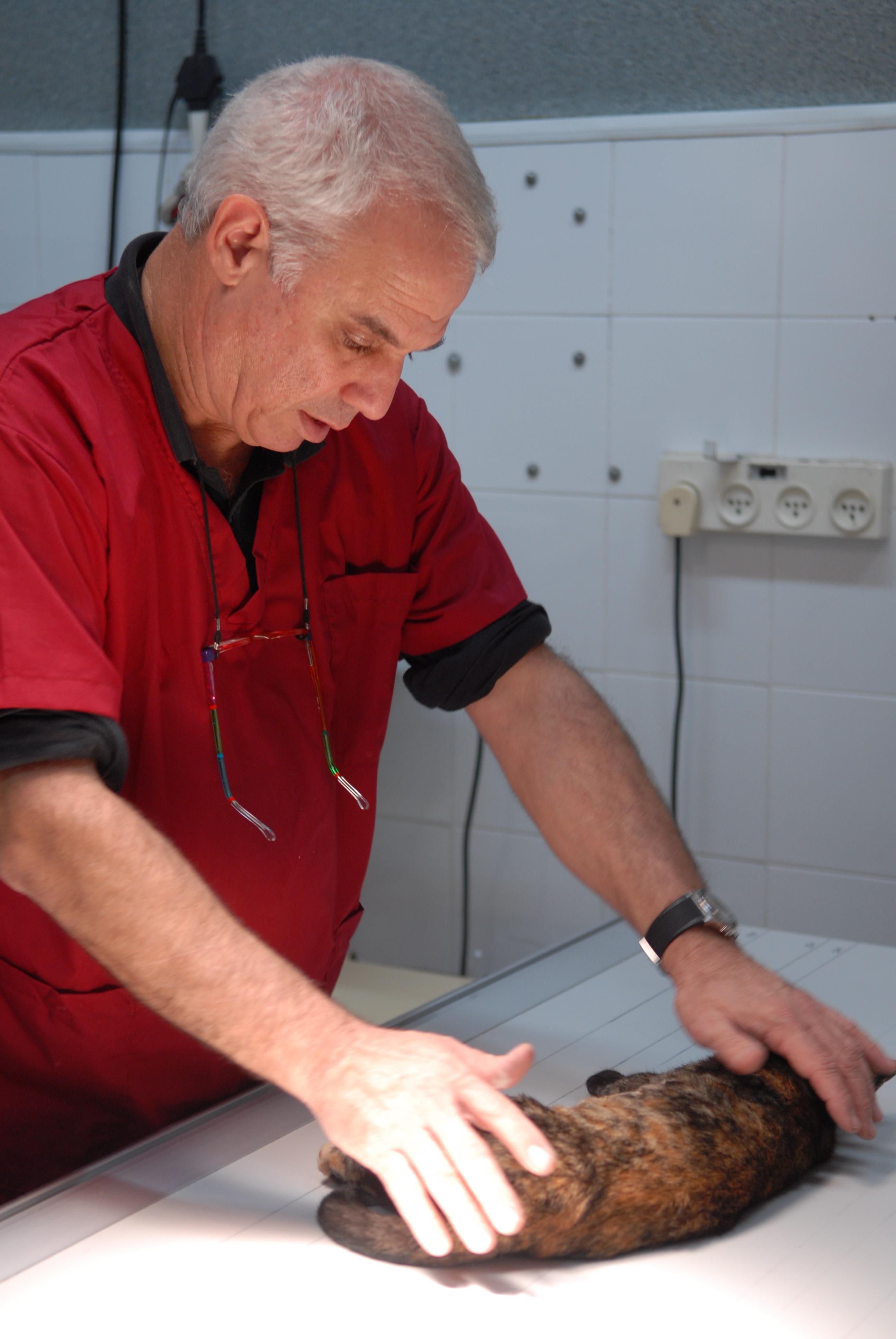 """ד""""ר גיורא היימן"""