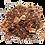 Thumbnail: Tea by numbers / Elderberry & Rhubarb