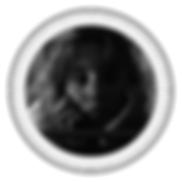 Noir et Or Cercle Immobilier Logo-5.png