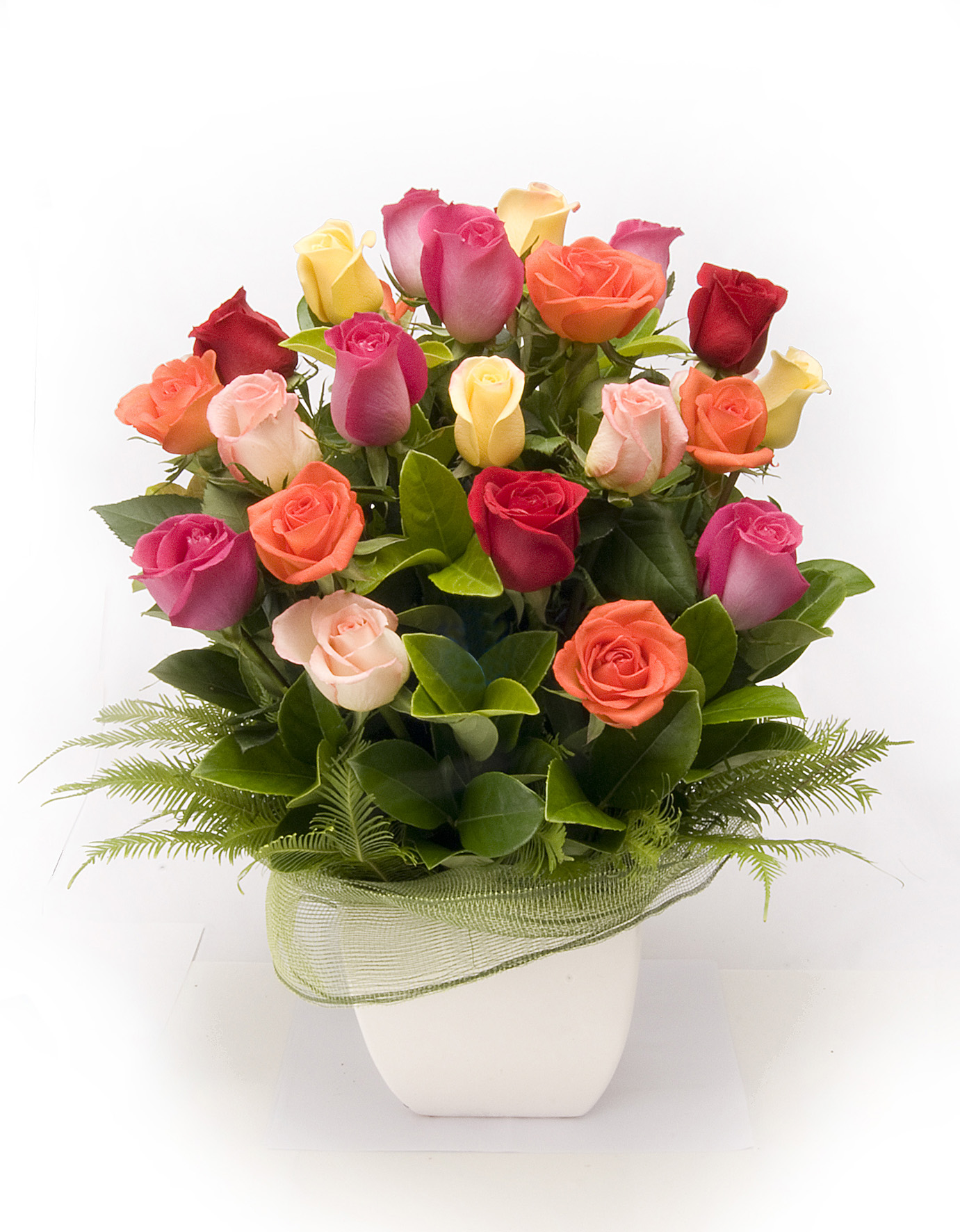 Warringah Florist coloured roses