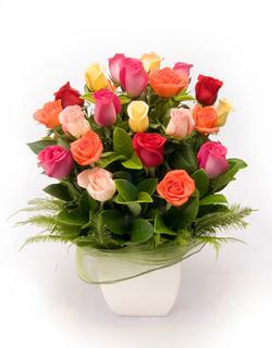 Warringah Florist coloured roses
