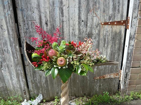 Designer Native and Succulent Arrangement