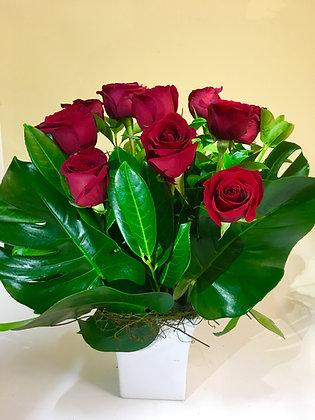 10 Premium Roses in ceramic container
