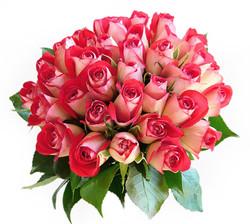 Warringah Florist Wedding Roses