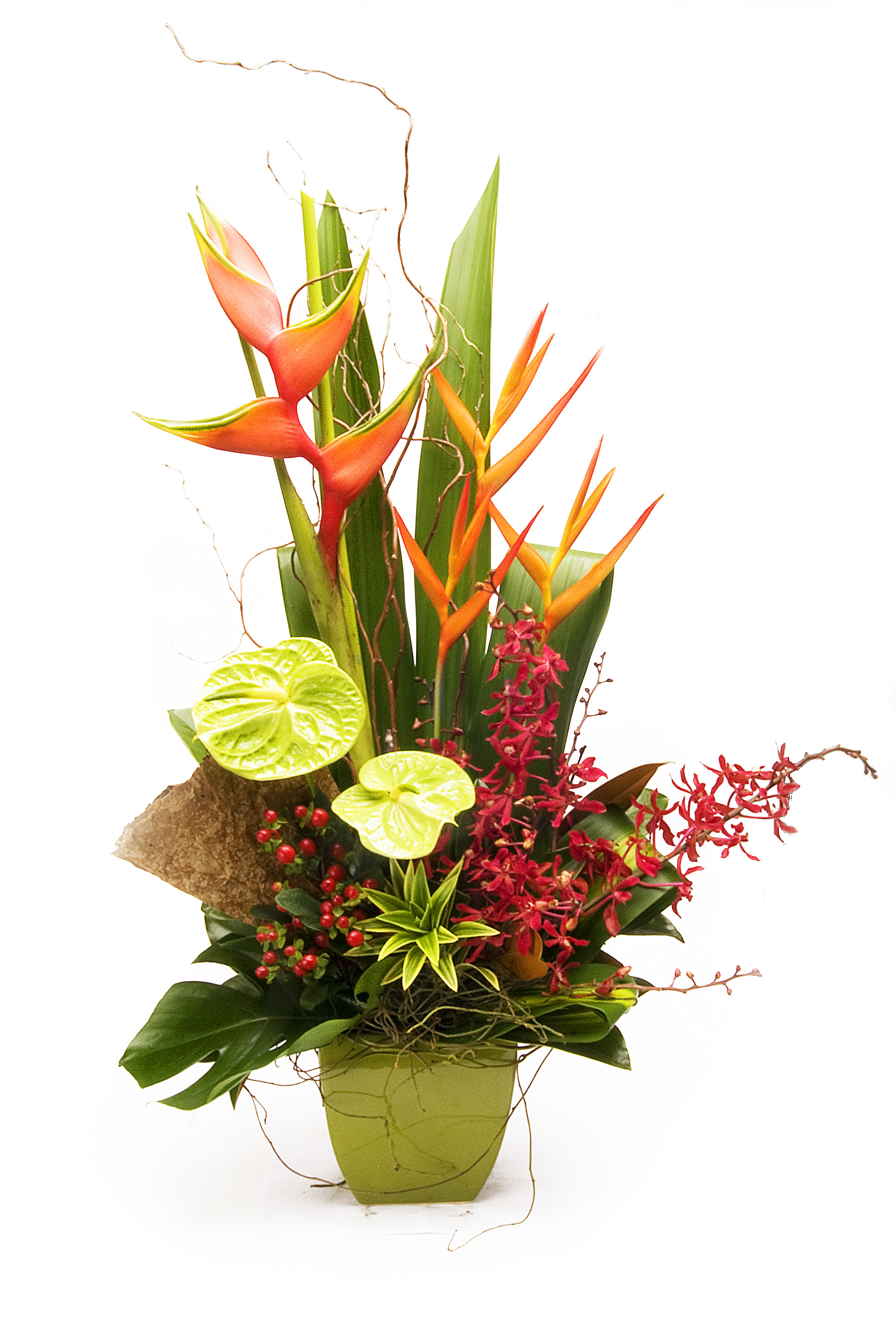 Warringah Florist Heliconia bouquet