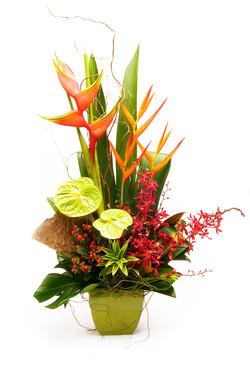 Warringah Florist Heliconia bouquet