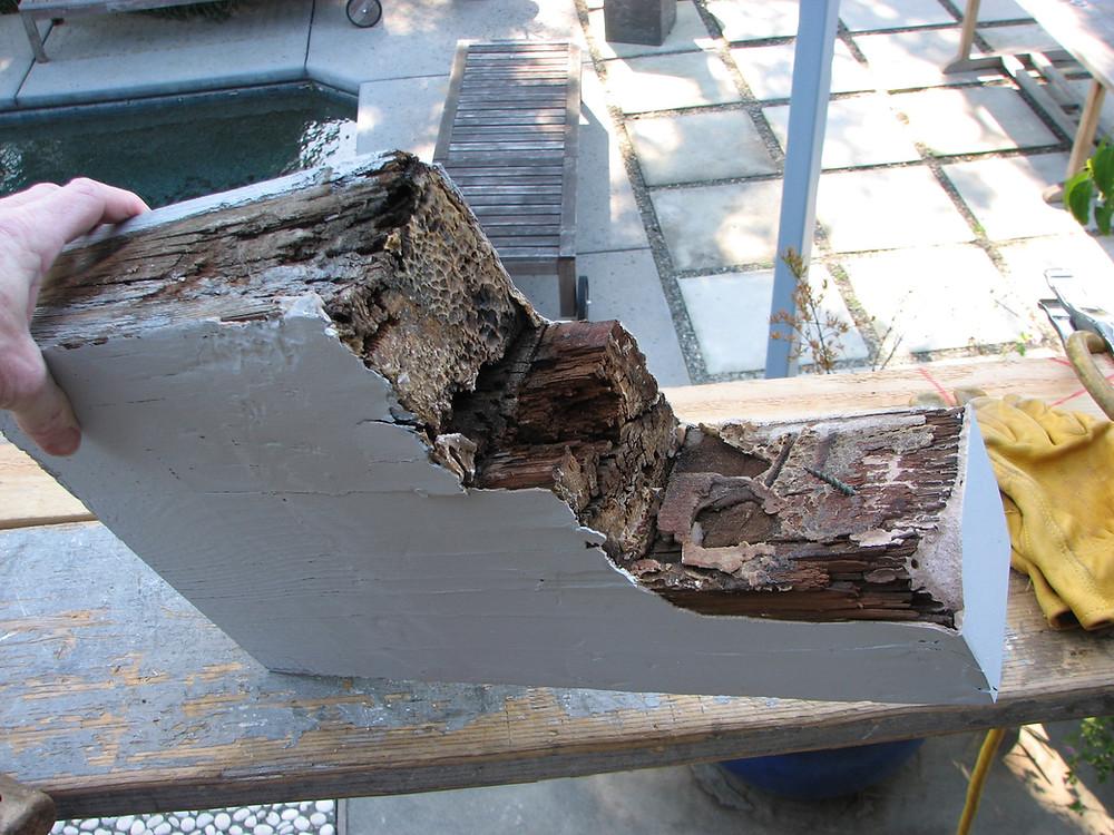 Dry Rot In Original Exterior Beam Removed Prior To Repair