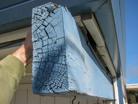 Spottin' the Rotten: understanding the nature of roof beam dry rot
