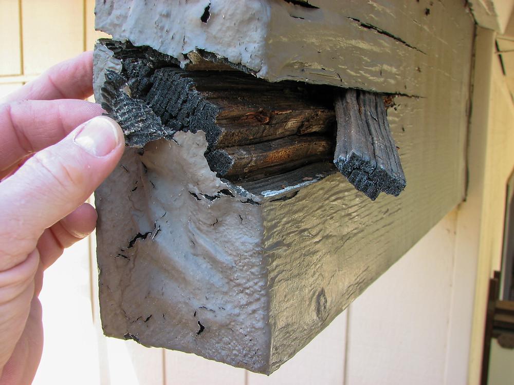 Dry rot hidden under paint